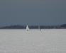 En DN og en Isabella - Arresøen d. 23/1 2010