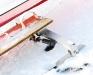 Is maskinen med olie dæmpere - Arresøen d. 23/1 2010