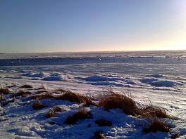 Fortsat vinter og is 21/1 2011