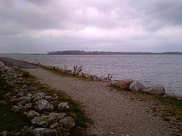 Efterårsdag i Veddelev 28/10 2010